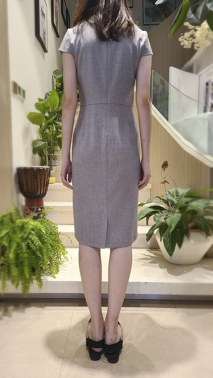 WOMEN CAP SLEEVE SHEATH DRESS